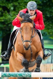 outdoor gelderland 2012 springend paard