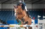 springend-paard-hindernis